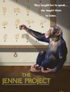 Проект Дженни