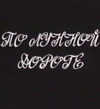 По лунной дороге (1991)