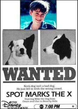 Собачий секрет (1986) смотреть онлайн