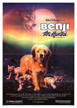 Картинка к мультфильму Погоня за Бенджи (1987)