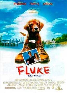 Флюк (1995) смотреть онлайн