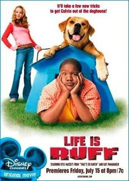 Картинка к мультфильму Лучший пес (2005)