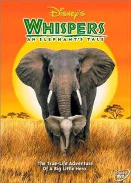 Картинка к мультфильму Приключения слона (2000)