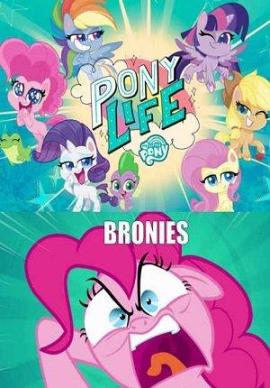 Картинка к мультфильму Мой маленький пони: Жизнь пони / Пони Лайф 1,2 сезон